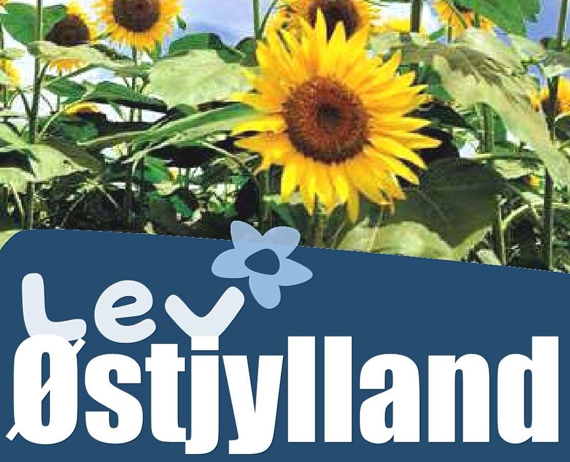Forside bladet Lev Østjylland 3 2021